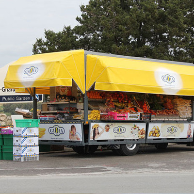 GIOIA® Bananas is then distributed to our local wholesalers and greengrocers.